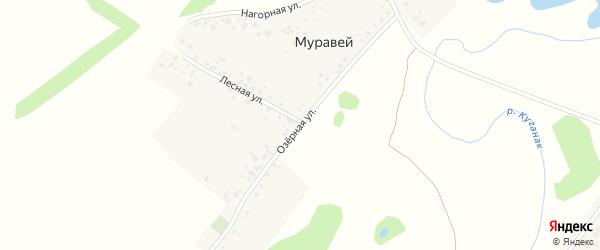 Озёрная улица на карте деревни Муравья с номерами домов