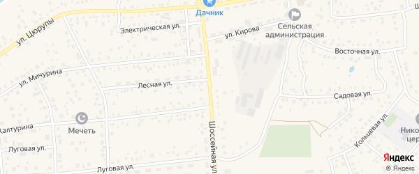 Шоссейная улица на карте села Булгаково с номерами домов