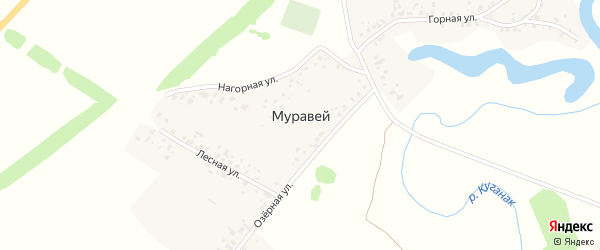 Молодежная улица на карте деревни Муравья с номерами домов