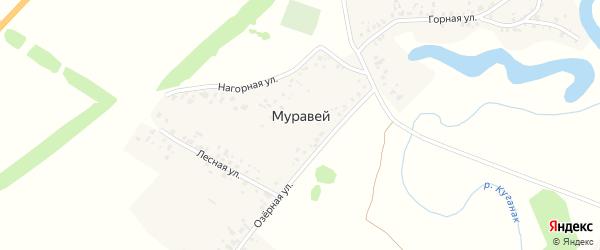 Нагорная улица на карте деревни Муравья с номерами домов