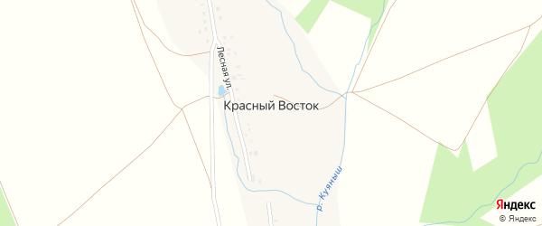 Лесная улица на карте деревни Красного Востока с номерами домов