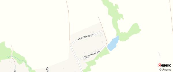 Нагорная улица на карте села Беляшево с номерами домов