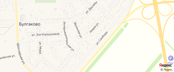 Новая улица на карте села Булгаково с номерами домов
