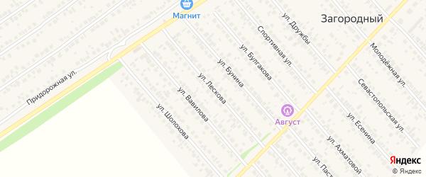 Улица Лескова на карте села Загородного с номерами домов