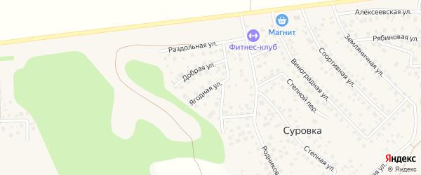 Ягодная улица на карте деревни Суровки с номерами домов