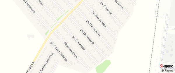 Улица Цветаевой на карте села Загородного с номерами домов
