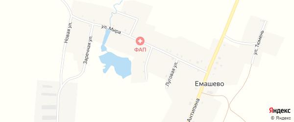 Переулок Гагарина на карте села Емашево с номерами домов