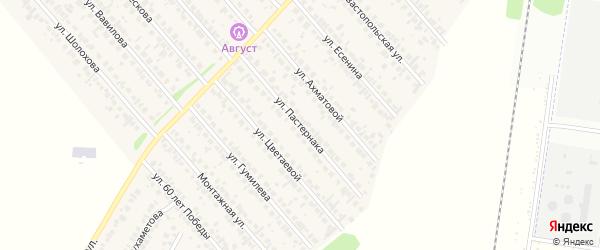 Улица Пастернака на карте села Загородного с номерами домов