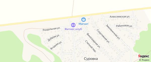 Родниковый переулок на карте деревни Суровки с номерами домов