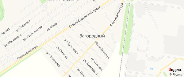 Карта села Загородного в Башкортостане с улицами и номерами домов