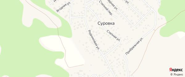 Родниковая улица на карте деревни Суровки с номерами домов