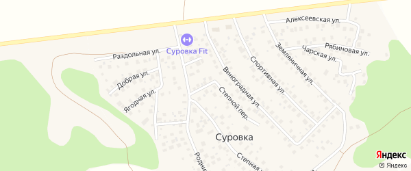 Степной переулок на карте деревни Суровки с номерами домов