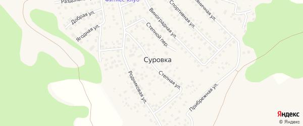 Степная улица на карте деревни Суровки с номерами домов