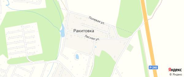 Лесная улица на карте деревни Ракитовки с номерами домов