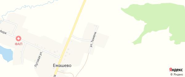 Улица Тюмень на карте села Емашево с номерами домов