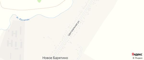 Центральная улица на карте села Новое Барятино с номерами домов