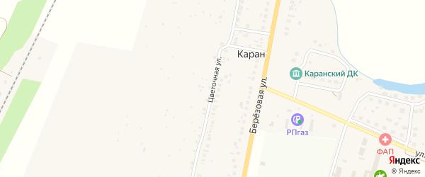 Цветочная улица на карте деревни Карана с номерами домов