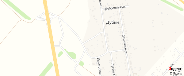 Северная улица на карте деревни Дубки с номерами домов