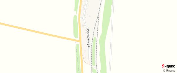 Тупиковая улица на карте села Васильевки с номерами домов