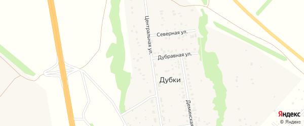 Центральная улица на карте деревни Дубки с номерами домов