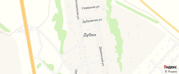 Просторная улица на карте деревни Дубки с номерами домов