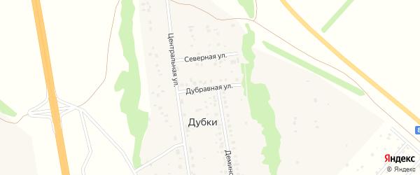 Дубравная улица на карте деревни Дубки с номерами домов