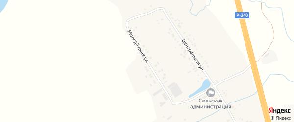 Молодежная улица на карте деревни Подлесного с номерами домов