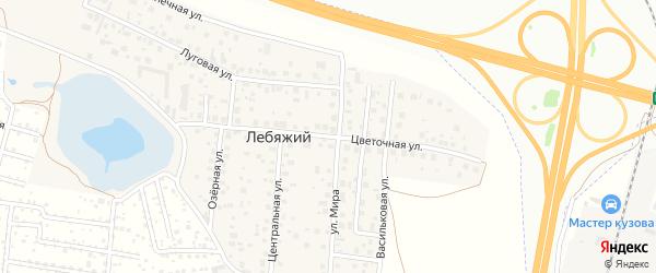 Цветочная улица на карте села Лебяжьего с номерами домов