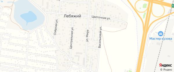 Улица Мира на карте села Лебяжьего с номерами домов