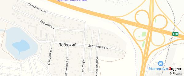 Васильковая улица на карте села Лебяжьего с номерами домов