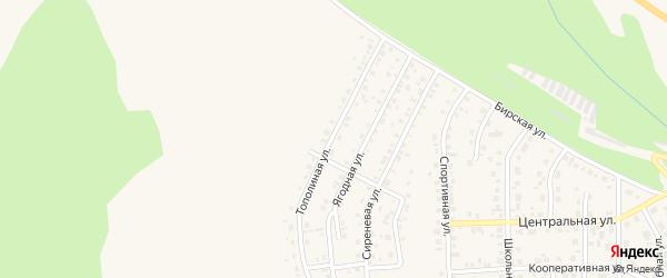 Тополиная улица на карте Благовещенска с номерами домов