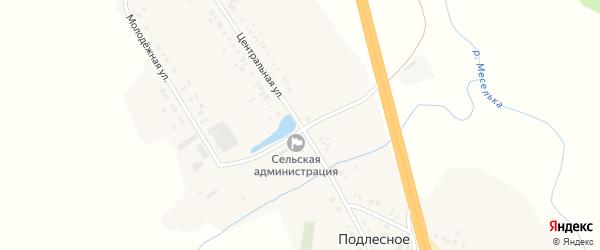 Центральная улица на карте деревни Подлесного с номерами домов