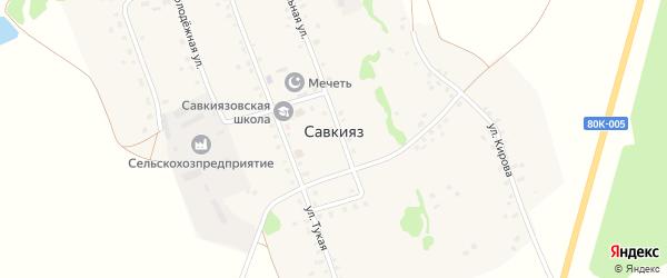 Молодежная улица на карте села Савкияза с номерами домов