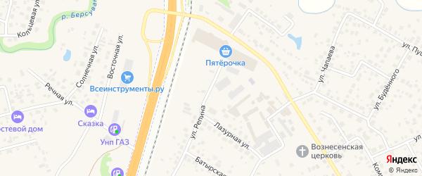 Улица Репина на карте села Чесноковки с номерами домов