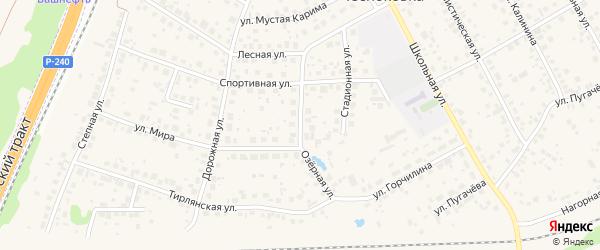 Озерная улица на карте села Чесноковки с номерами домов