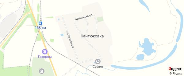 Карта деревни Кантюковки в Башкортостане с улицами и номерами домов