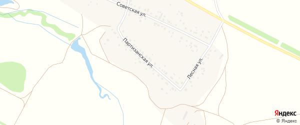 Партизанская улица на карте деревни Старомусино с номерами домов