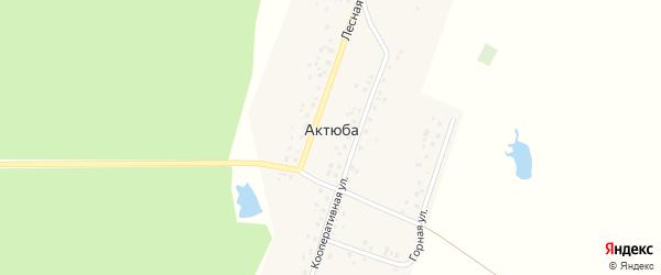 Горная улица на карте деревни Актюбы с номерами домов
