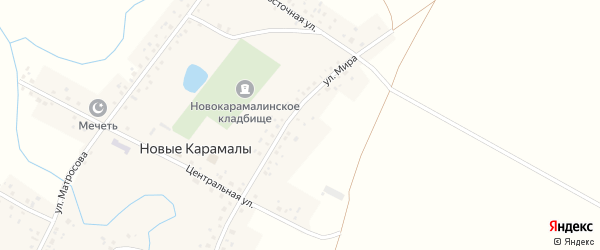 Улица Мира на карте деревни Новые Карамалы с номерами домов