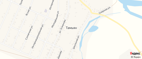 Улица Фарита Шафеева на карте деревни Тамьяна с номерами домов