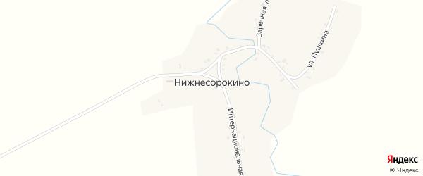 Заречная улица на карте деревни Нижнесорокино с номерами домов