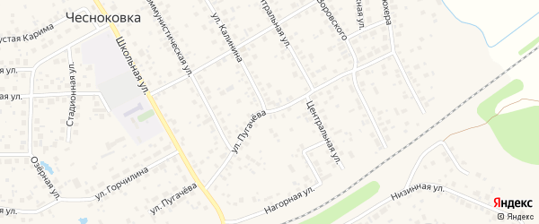 Улица Пугачева на карте села Чесноковки с номерами домов