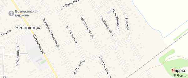 Центральная улица на карте села Чесноковки с номерами домов