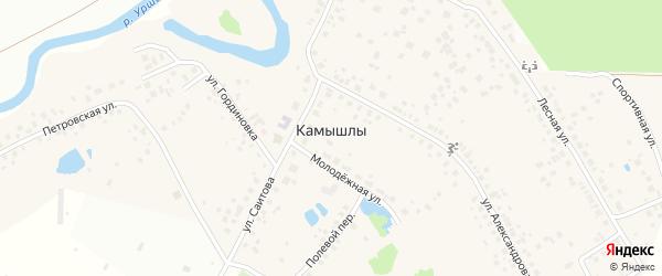 Лесной переулок на карте деревни Камышлы с номерами домов