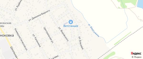 Молодежная улица на карте села Чесноковки с номерами домов