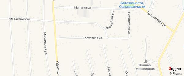 Совхозная улица на карте села Мишкино с номерами домов