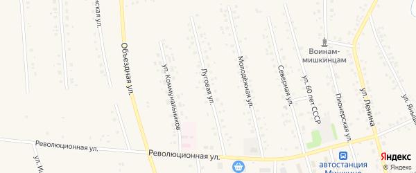 Луговая улица на карте села Мишкино с номерами домов