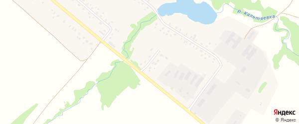 Улица Механизаторов на карте села Кальтяево с номерами домов
