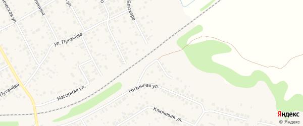 Набережная улица на карте села Чесноковки с номерами домов