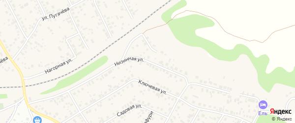 Низинная улица на карте села Чесноковки с номерами домов